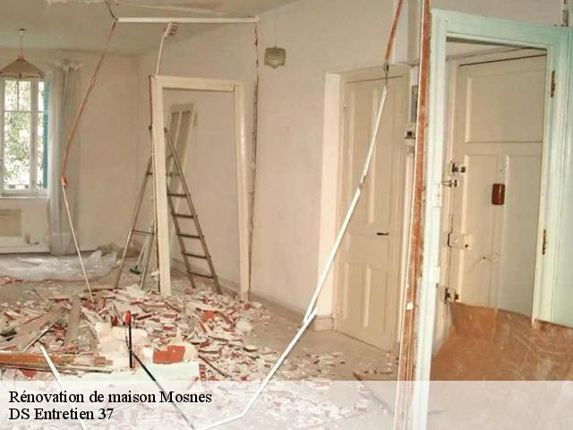 Rénovation de maison  mosnes-37530