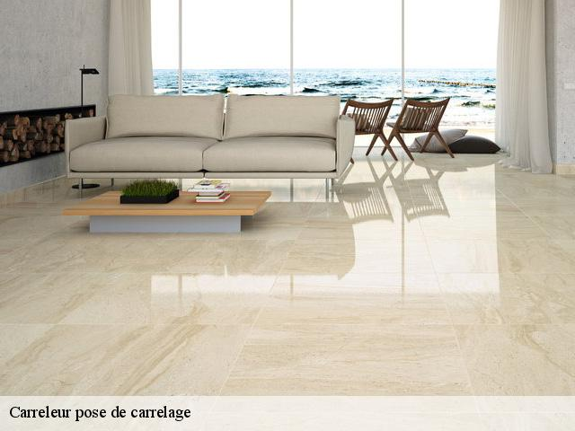 Carreleur pose de carrelage  37600