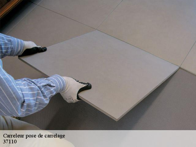 Carreleur pose de carrelage  37110