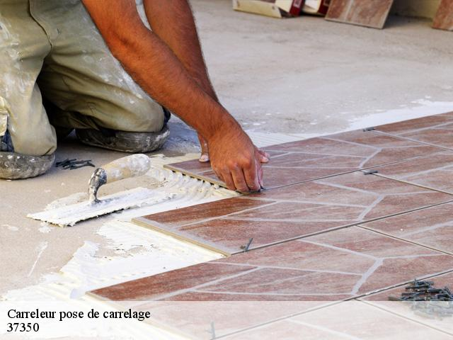 Carreleur pose de carrelage  37350